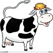 Куплю корову на молоко